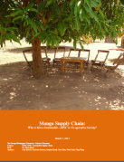 Mango Supply Chain - Image